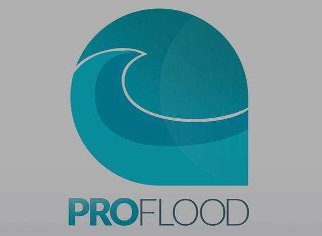 pro flood